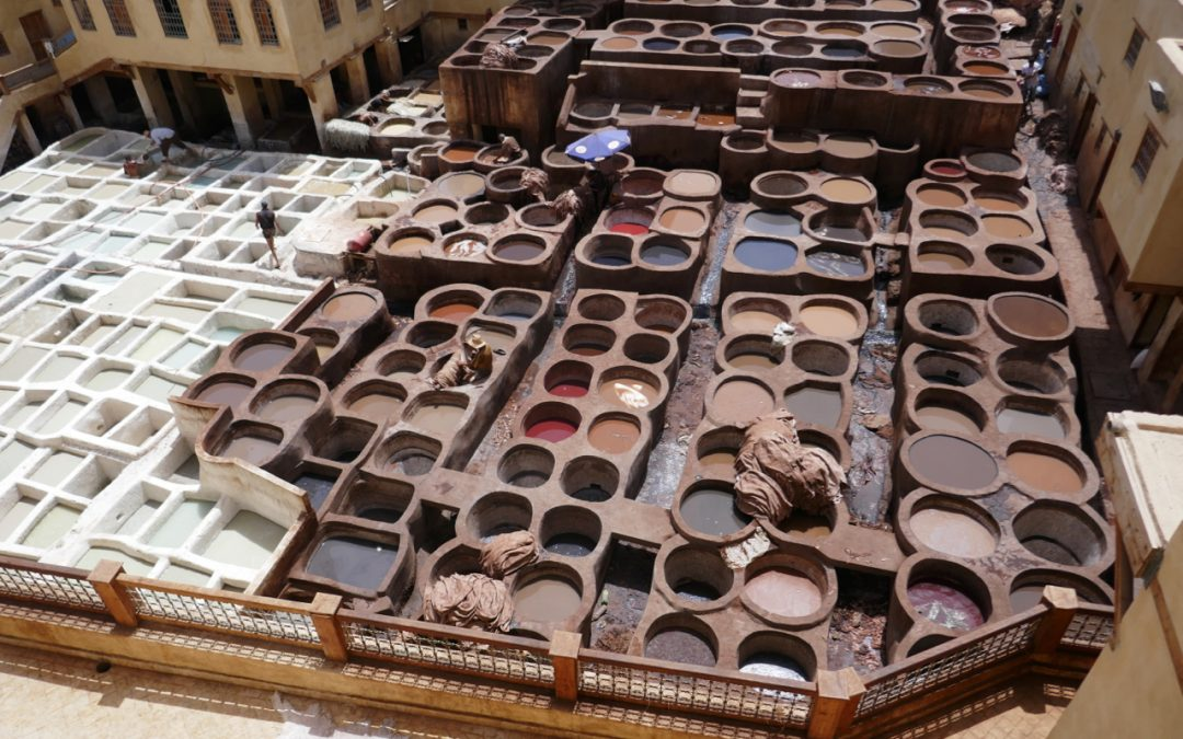 A Side Trip to Fes