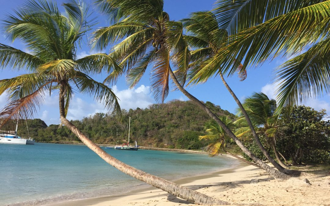 Salt Whistle Bay – Mayreau