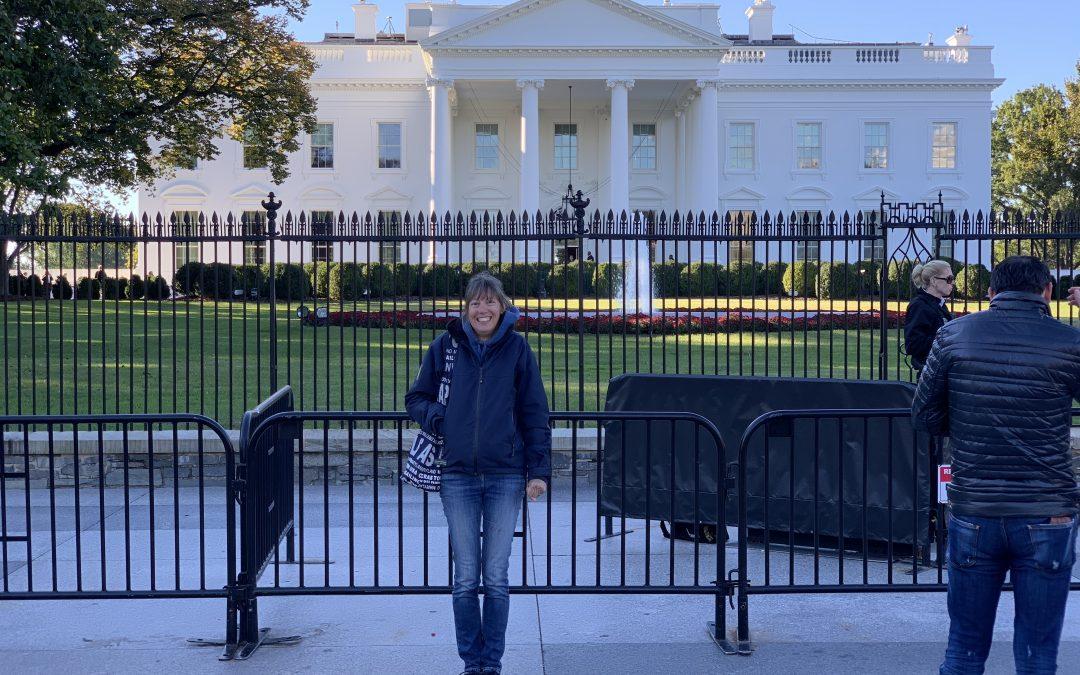 Lady Jane Goes To Washington